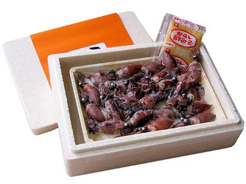 p_hotaruikaichiyaboshi02.jpg